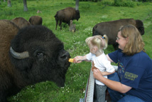 mom and daughter petting buffalo