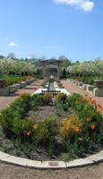 garden in ames