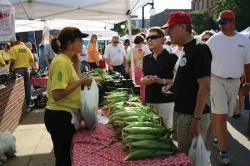 Sweet corn at farmers market.
