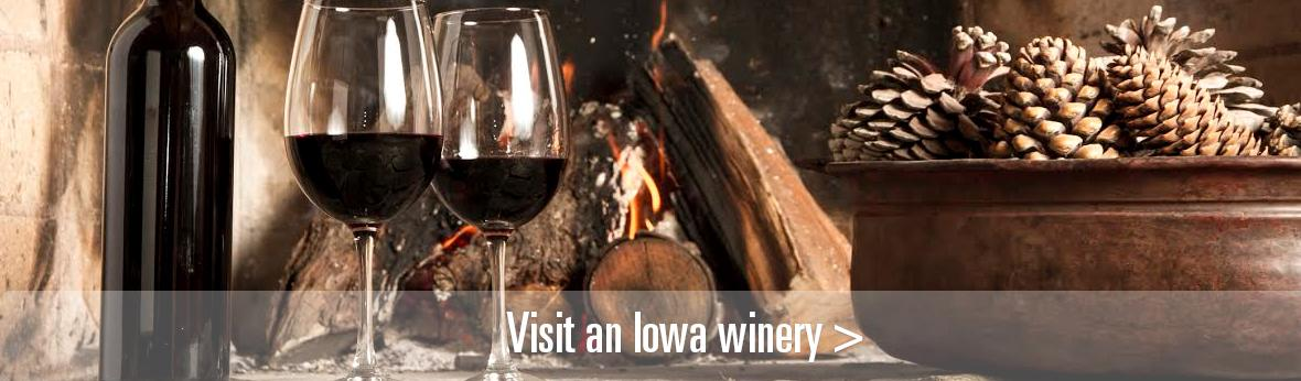 Wine glasses by a fire